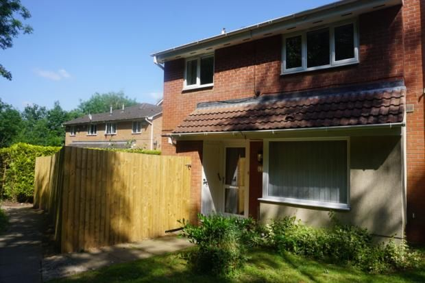 Thumbnail Semi-detached house to rent in Midland Court, Madeley