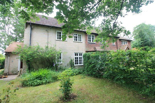 Thumbnail End terrace house to rent in Chithurst Lane, Petersfield