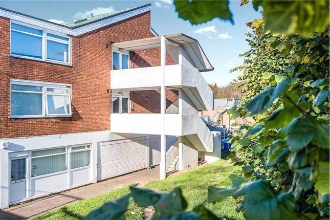 Rear Photo of Earlham Road, Norwich, Norfolk NR2