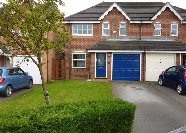 Thumbnail Semi-detached house for sale in Snowdrop Close, Healing, Grimsby