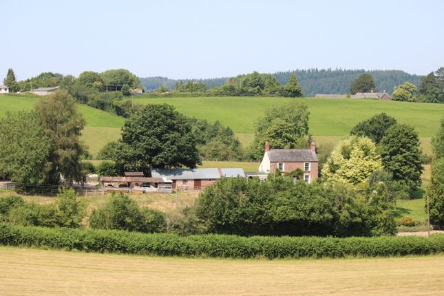 Thumbnail Cottage for sale in Lea Bailey, Ross-On-Wye