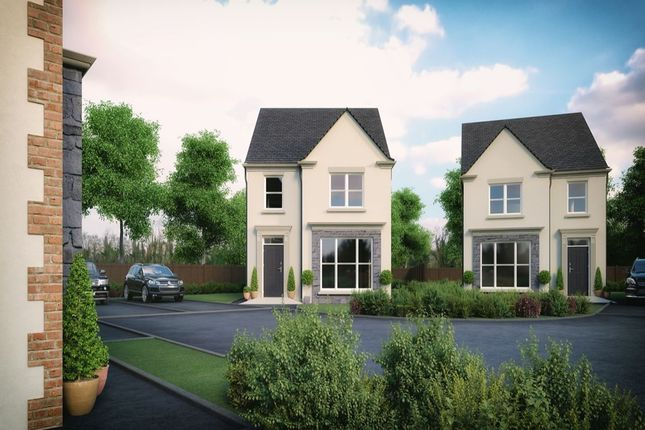 Thumbnail Detached house for sale in Coach Hall, Lylehill Road East, Templepatrick, Ballyclare