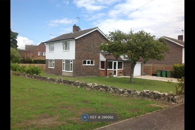 Thumbnail Detached house to rent in Yew Tree Close, Ashford