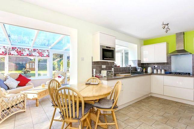 Thumbnail Detached bungalow for sale in Pack Lane, Basingstoke
