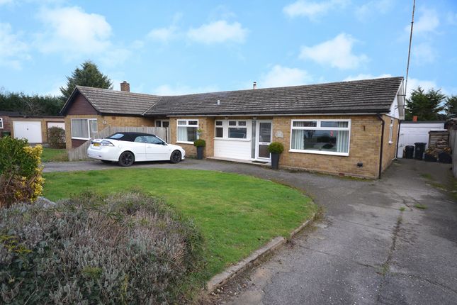 Thumbnail Semi-detached bungalow for sale in Green Trees Avenue, Cold Norton, Chelmsford