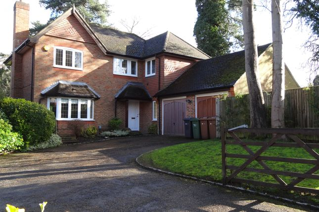 Thumbnail Detached house to rent in Aldersey Road, Guildford