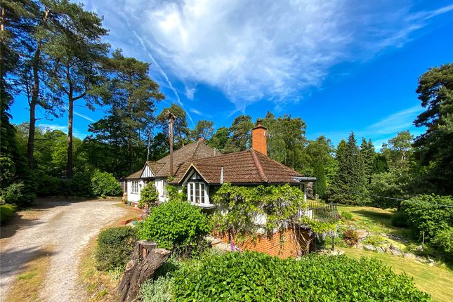 Thumbnail Bungalow for sale in Lightwater, Surrey