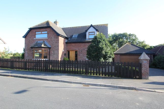Thumbnail Detached house for sale in Millbank, Bangor