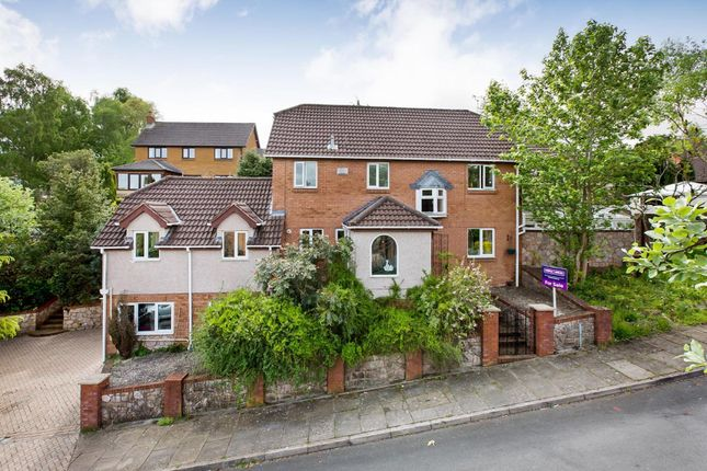 Thumbnail Detached house for sale in Hawthorn Close, Newton Abbot