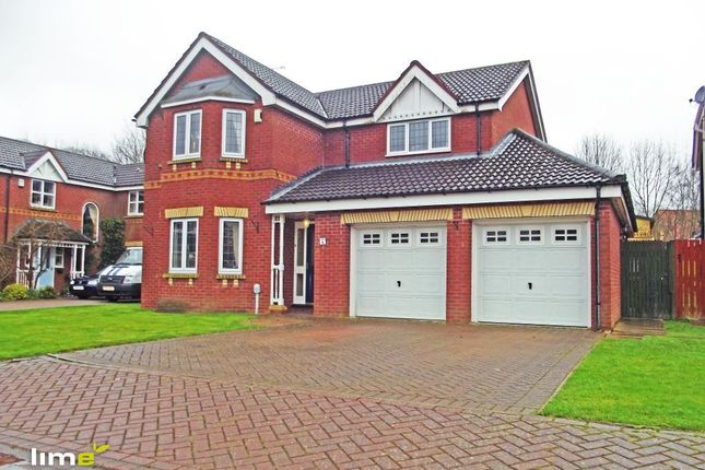 Thumbnail Detached house to rent in Maple Grove, Tranby Park, Hessle, East Yorkshire