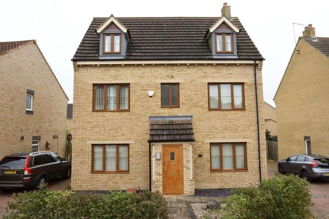 Thumbnail Detached house to rent in Norman Gate, Ailsworth, Peterborough