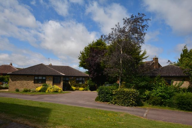 Thumbnail Detached bungalow for sale in St. Thomas Road, Brafield On The Green, Northampton