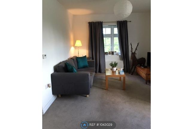 Room to rent in Cobnut Avenue, Maidstone ME15