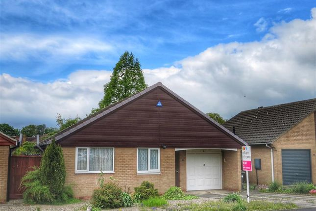Thumbnail Detached bungalow to rent in Acacia Grove, Haxby, York