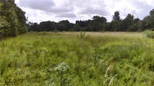 Thumbnail Equestrian property to rent in Paddock At The Butts, Riseley, Bedfordshire