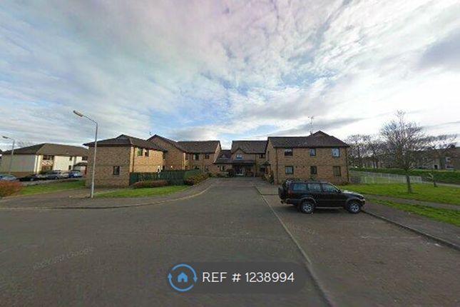 1 bed flat to rent in Morar Court, Grangemouth FK3