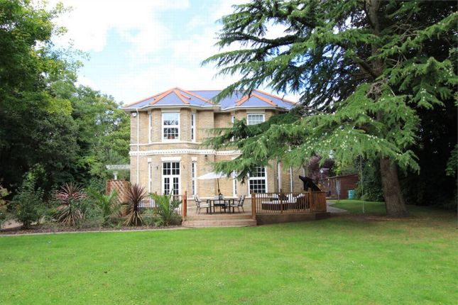 Thumbnail Detached house to rent in Dean Park Road, Bournemouth, Dorset