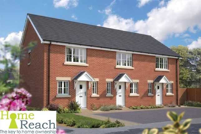 Thumbnail Terraced house for sale in Chard Road, Axminster