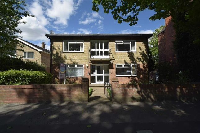 Thumbnail Flat to rent in Cottingham Road, Hull