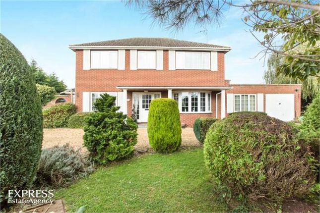 Thumbnail Detached house for sale in Ferry Road, West Lynn, King's Lynn, Norfolk