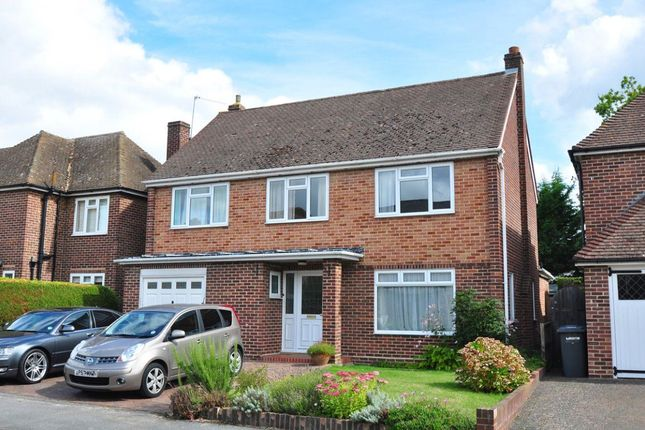Thumbnail Detached house to rent in Archer Close, Maidenhead