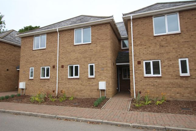 Thumbnail Terraced house to rent in Kilkenny Avenue, Ely