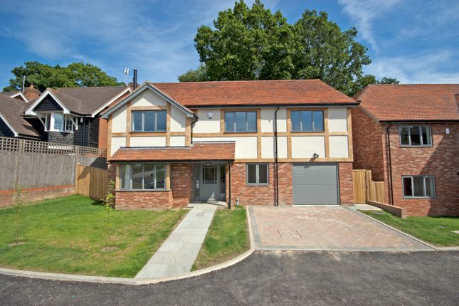 Thumbnail Detached house for sale in Cedar Close, Northiam