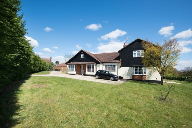 Thumbnail Detached house for sale in Bran End, Stebbing, Dunmow