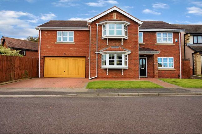 Thumbnail Detached house for sale in Pinewood Close, Hartlepool