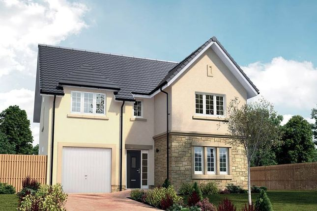 "Thumbnail Detached house for sale in ""The Colville"" at Queens Drive, Cumbernauld, Glasgow"