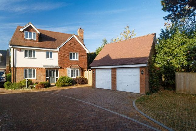 Thumbnail Detached house for sale in Tanners Close, Hythe