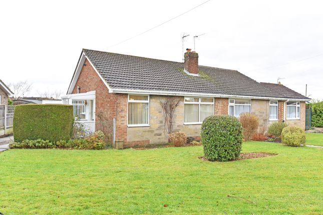 Thumbnail Semi-detached bungalow to rent in Beckwith Road, Harrogate