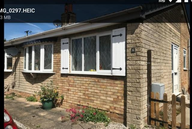Thumbnail Bungalow to rent in Beech Grove, Camblesforth, Selby