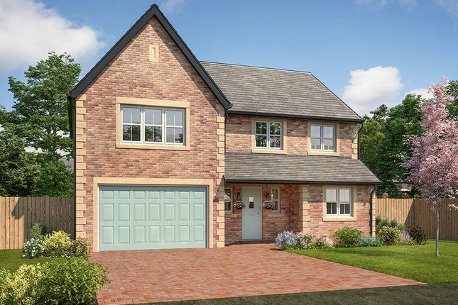 "Thumbnail Detached house for sale in ""Mayfair"" at Station Road, Longhoughton, Alnwick"