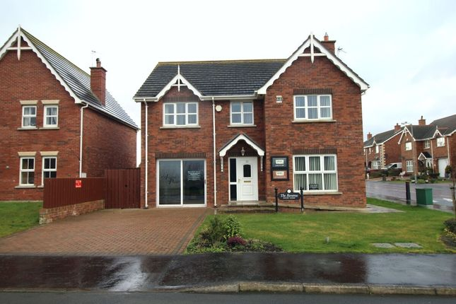Thumbnail Detached house for sale in St. Andrews Avenue, Ballyhalbert