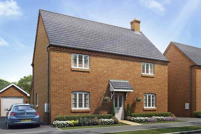 "Thumbnail Detached house for sale in ""The Chestnut"" at Ashton Road, Roade, Northampton"