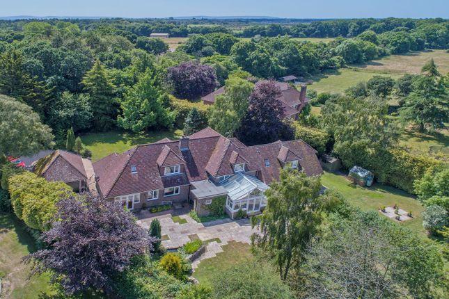 Thumbnail Detached house for sale in Tilebarn Lane, Brockenhurst