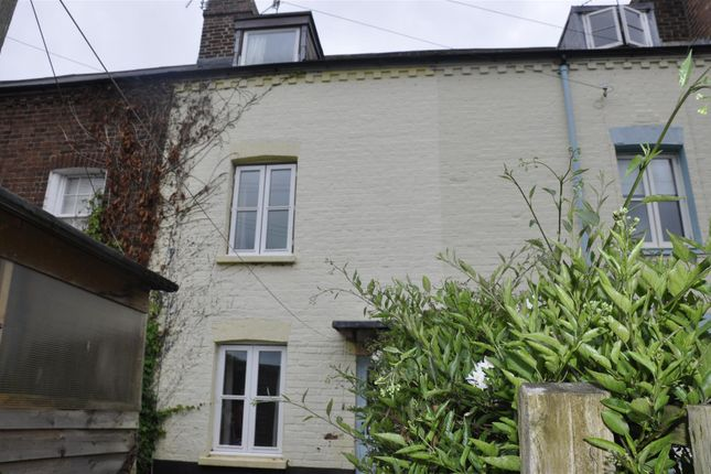 Thumbnail Terraced house to rent in St. Davids Terrace, Exeter
