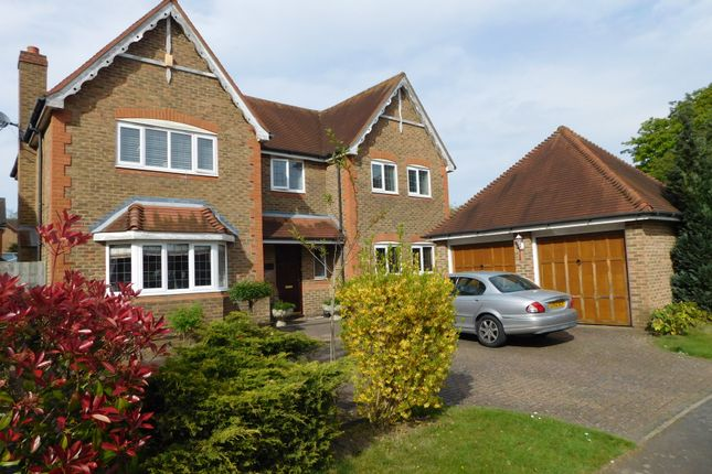 Thumbnail Detached house for sale in Cedar Close, Iver