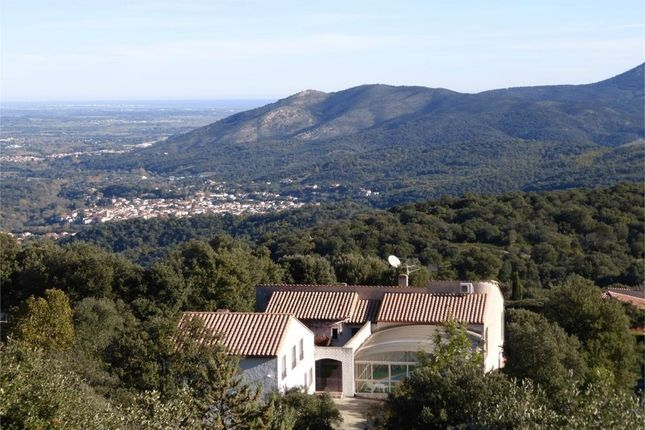 Thumbnail Property for sale in Ceret, Languedoc-Roussillon, 66400, France