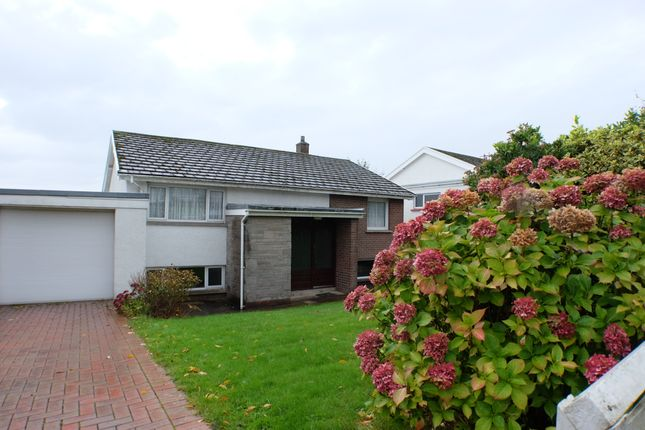 Thumbnail Detached house to rent in West Port Avenue, Swansea