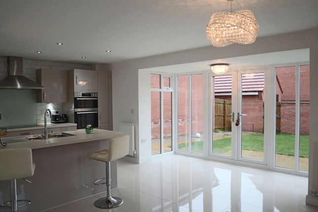 Thumbnail Detached house to rent in Mulberry Avenue, Beverley, Yorkshire
