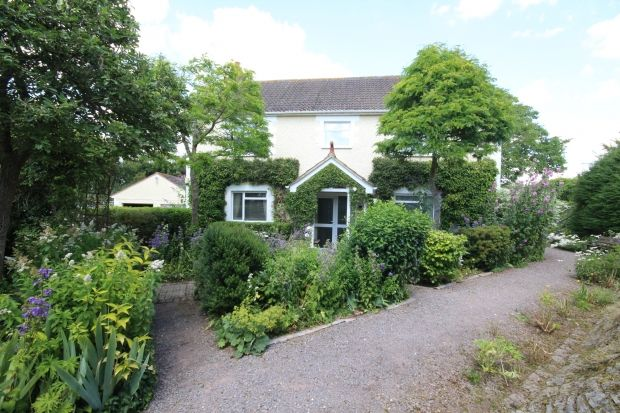 Thumbnail Detached house for sale in East Lyng, Taunton