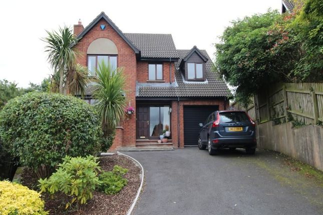 Thumbnail Detached house to rent in Curlew Crescent, Portaferry Road, Newtownards