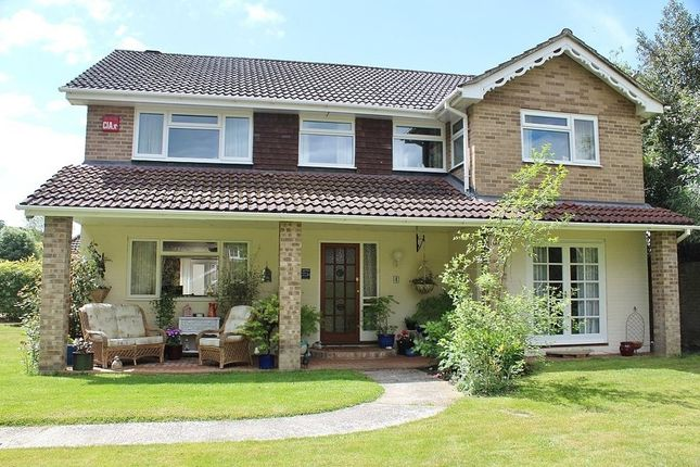 Thumbnail Detached house for sale in Widley Gardens, Widley, Waterlooville