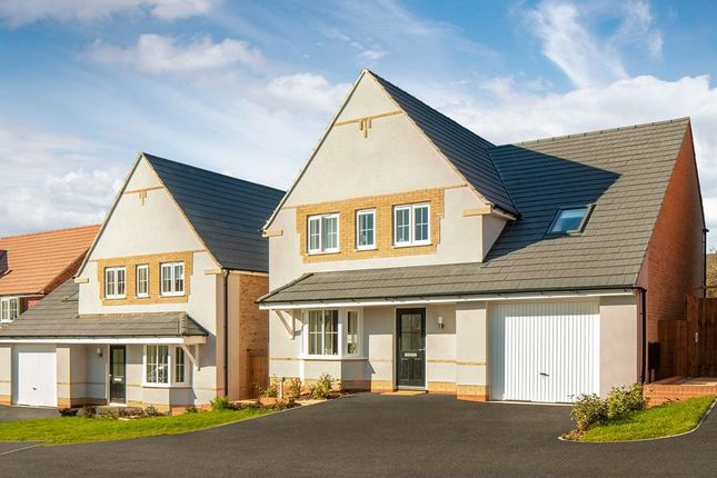 "Thumbnail Detached house for sale in ""Harrogate"" at Livingstone Road, Corby"