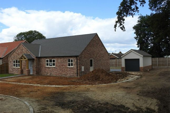Thumbnail Detached house for sale in Sherwood Close, Downham Market