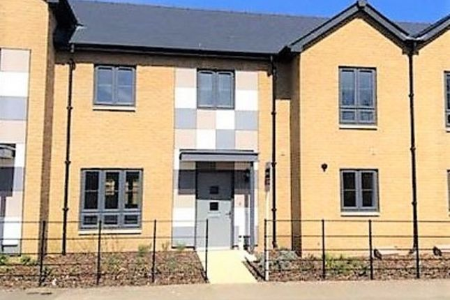 Thumbnail Terraced house to rent in Ashford