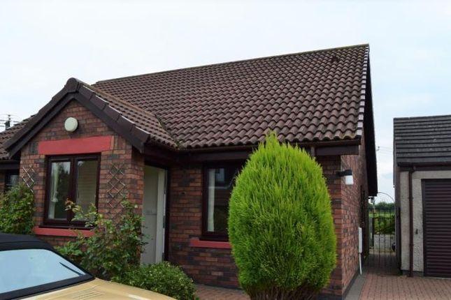 Thumbnail Bungalow to rent in Dale View, Laversdale, Irthington, Carlisle