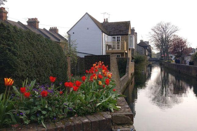 Thumbnail Property to rent in Pound Lane, Canterbury